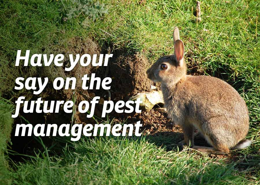 Have your say on the future of pest management